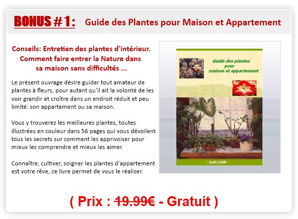 Guide des plantes pour maison et appartement