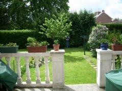 techniques de taille et arrosage jardin