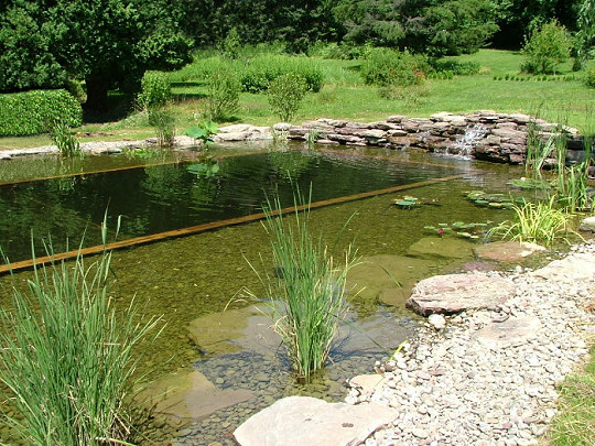 Comment construire une piscine naturelle et cologique en for Piscine naturelle cascade