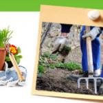 Travaux au jardin: Ce qu'il faut faire en Mai