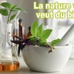 PHYTOTHERAPIE: Le bien-être et la santé au naturel