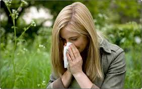Traiter le rhume des foins Solution contre le rhume des foins