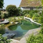 comment faire une piscine naturelle