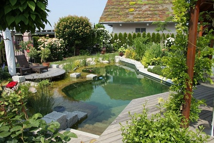 comment faire une piscine naturelle