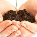 Mieux connaître le sol de votre jardin