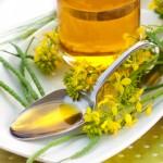 Huiles alimentaires: huile végétale, huile de noix, huile de soja, huile de friture, huile olive