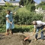 Les bienfaits du jardinage pour votre santé