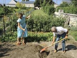 Les bienfaits du jardinage pour votre sant eco ecolo for Jardinage pour les nuls