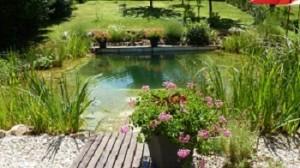 Construire une piscine naturelle eco ecolo pour cologie for Construire une cave naturelle