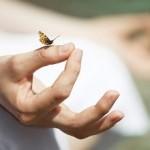 9 étapes pour pratiquer correctement une méditation simple