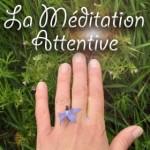 Méditation attentive - Apprenez à apprécier chaque instant de la vie