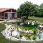 Construire un Etang de Baignade Paysagé – Piscine Naturelle