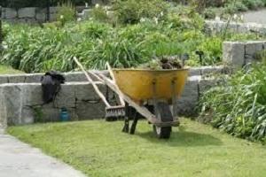 Comment am nager son jardin conseils malins eco ecolo pour ecologie bien etre bio et la - Amenager son jardin en ligne ...
